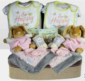 Cute Baby Shower Gift Basket Ideas-Happy Kaloo Twins