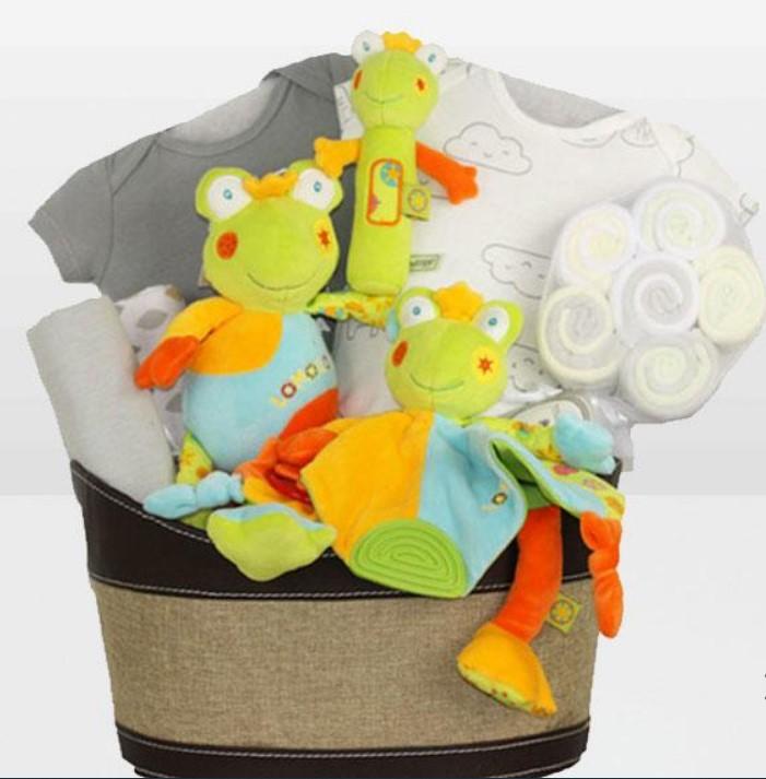 Cute Baby Shower Gift Basket Ideas-Neutral Frog Fun