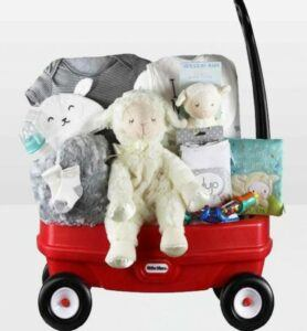 Cute Baby Shower Gift Basket Ideas-Neutral baby wagon
