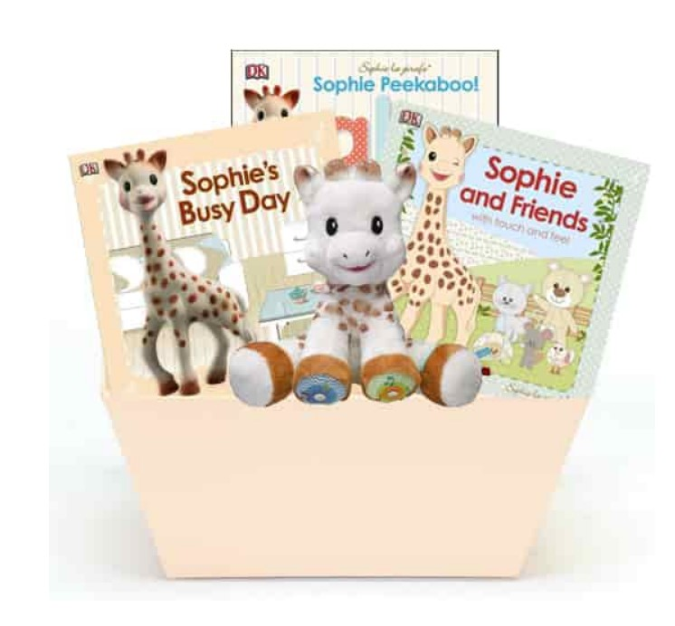 Cute Baby Shower Gift Basket Ideas-Sophie's Collection