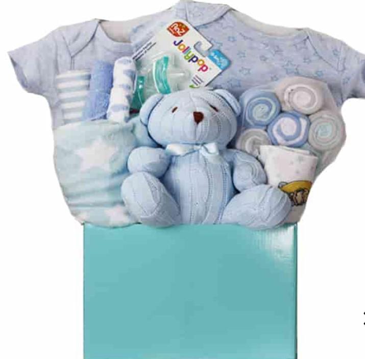 Cute Baby Shower Gift Basket Ideas-Teddy Arrival Gift Basket