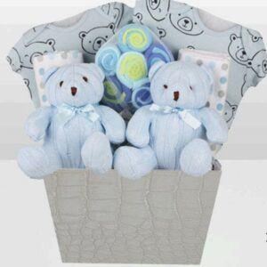 Cute Baby Shower Gift Basket Ideas-Twins Blue Bear Basket