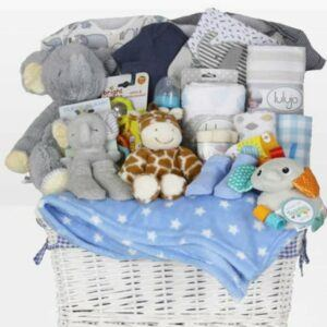Cute Baby Shower Gift Basket Ideas-Welcome Home Baby Boy
