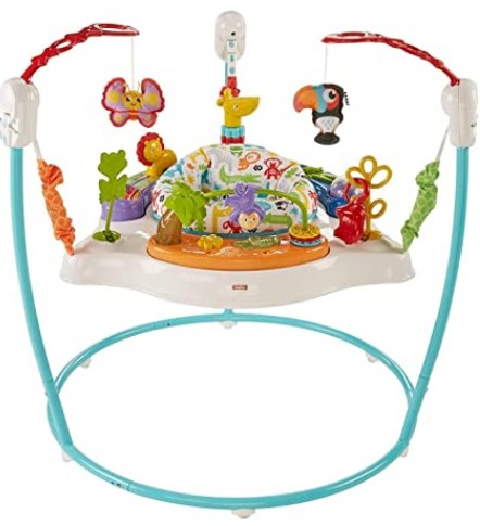 Best Baby Jumpers And Bouncers -Fisher-Price Animal Activity Jumperoo, Blue, One Size